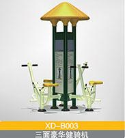 BXD-B003  三面豪华健骑机