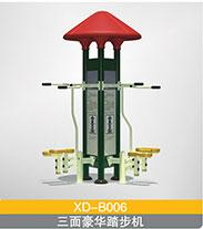 BXD-B006 三面豪华踏步机