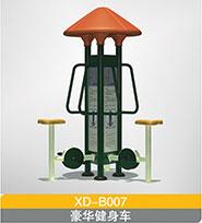 XD-B007  豪华健身车