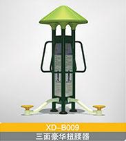 XD-B009  三面豪扭腰器华