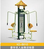 XD-B010-11  豪华双人坐拉训练器