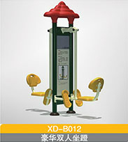 XD-B012 豪华双人坐蹬